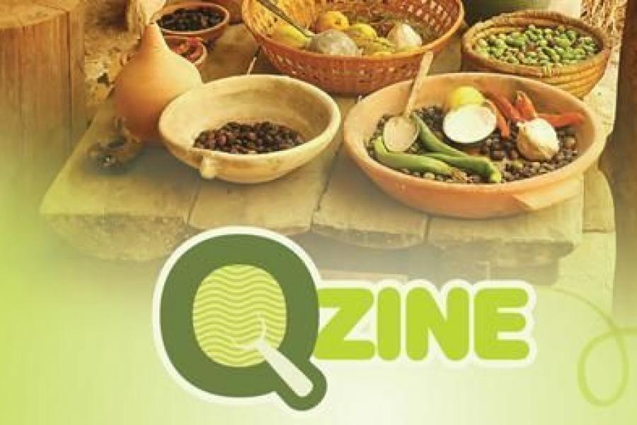 Qzine Catering Bucuresti